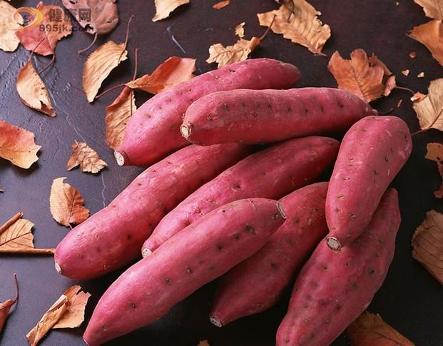 红薯,当之无愧的营养保健食品