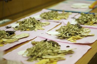 扁平苔藓是怎么治疗的