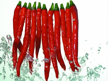 系统性硬化症能吃辣椒吗
