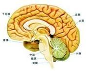 老人脑血栓康复期的护理