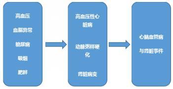 2017中国高血压的防治指南:高血压与心血管风险
